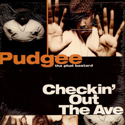 Pudgee - Checkin'Out The Ave