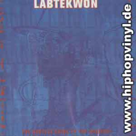 Labtekwon - Hustlaz guide to the universe