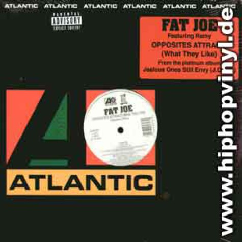 Fat Joe - Opposites attract