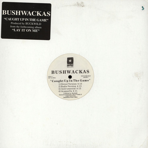 Bushwackass - Caught Up In The Game