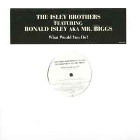 Isley Brothers, The - What would you do?