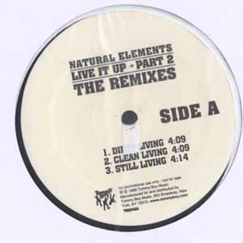 Natural Elements - Live it up Part 2 the remixes