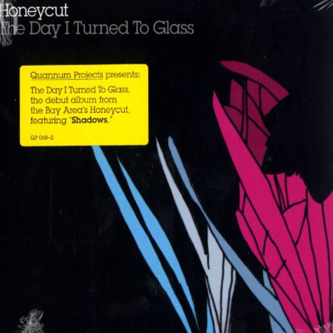 Honeycut - The day i turned to glass