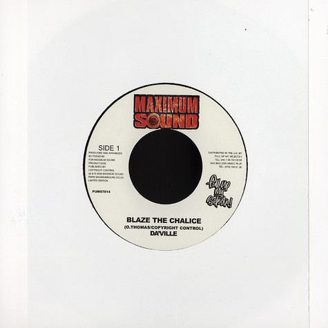 Daville / Ward 21 - Blaze the chalice / ain't no fun