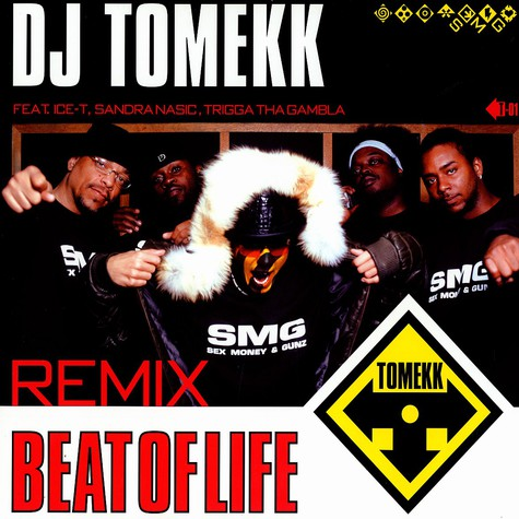 Dj Tomekk - Beat of life remix feat. Ice-T,Sandra Nasic & Trigga Tha Gambla