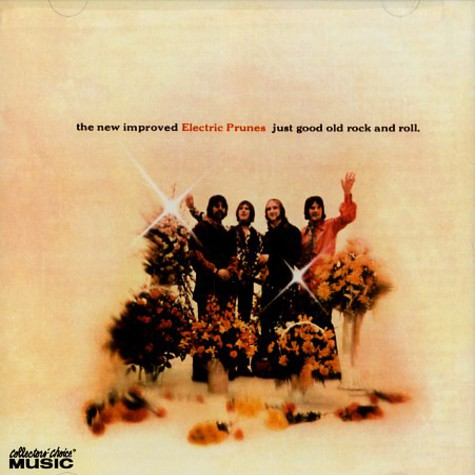 Electric Prunes, The - Just good old rock and roll