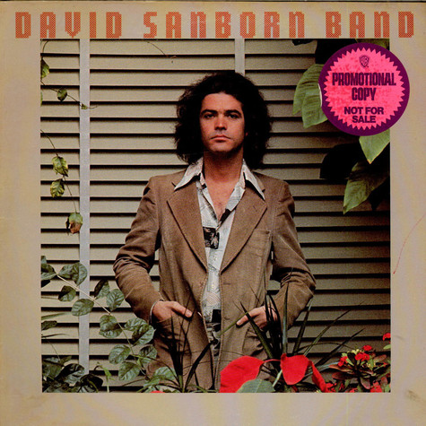 David Sanborn Band - Promise Me The Moon