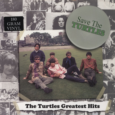 Turtles - Save The Turtles