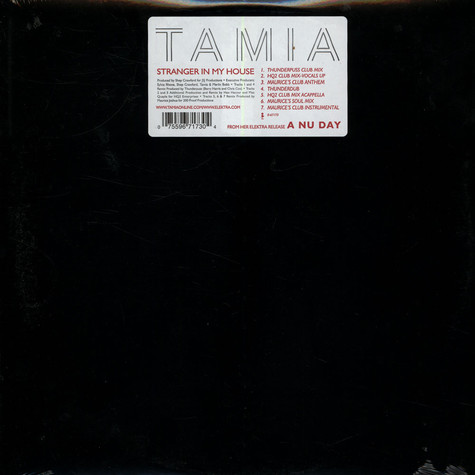 Tamia - Stranger in my house remixes