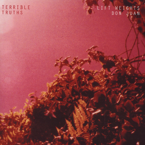Terrible Truths - Lift Weights