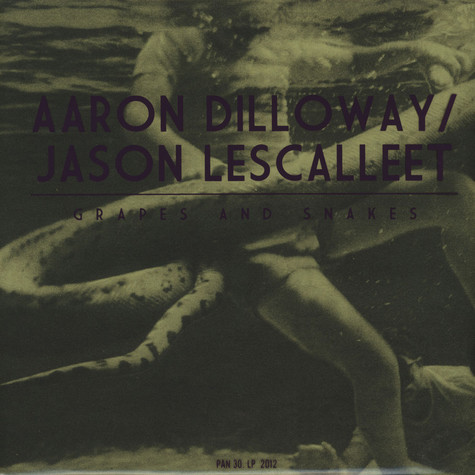 Aaron Dilloway of Wolf Eyes & Jason Lescalleet - Grapes And Snakes