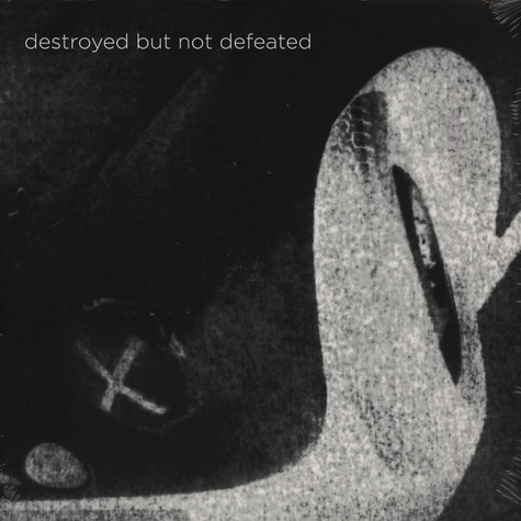 Destroyed But Not Defeated - Destroyed But Not Defeated