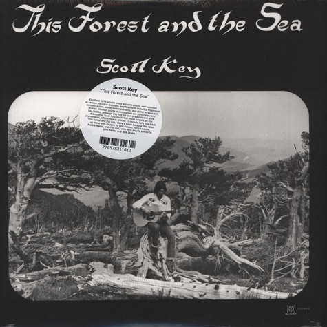 Scott Key - This Forest & The Sea
