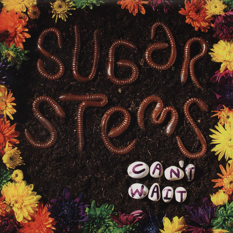 Sugar Stems - Can't Wait
