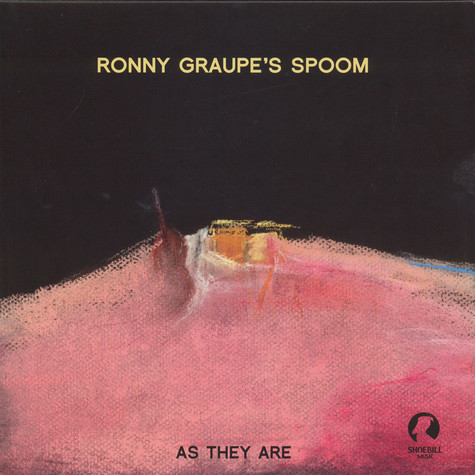 Ronny Graupe's Spoon - As They Are