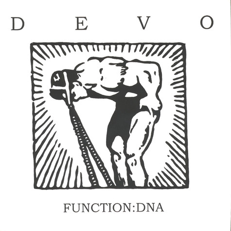 Devo - Function: DNA