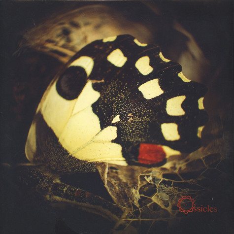 Ossicles - Music For Wastelands