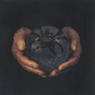 Buck Gooter - The Spider's Eyes