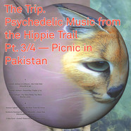 V.A. - The Trip. Psychedelic Music from the Hippie Trail. Pt. 3/4 - Picnic in Pakistan