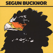 Segun Bucknor - Segun Bucknor