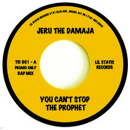 Jeru The Damaja - You Can't Stop The Prophet