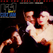 Lisa Lisa & Cult Jam With Full Force - Can You Feel The Beat
