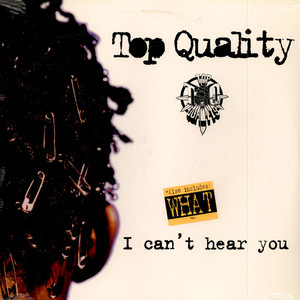 Top Quality - I Can't Hear You