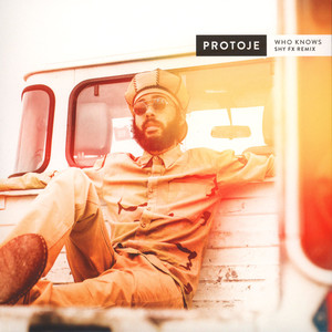 Protoje - Who Knows ( Shy FX Remix)