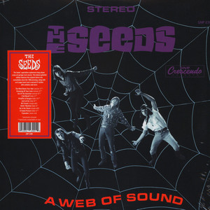 Seeds, The - A Web Of Sound