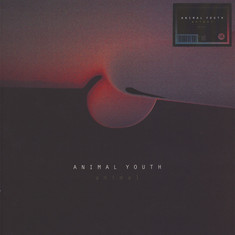Animal Youth - Animal